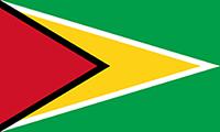 200px-Flag_of_Guyana